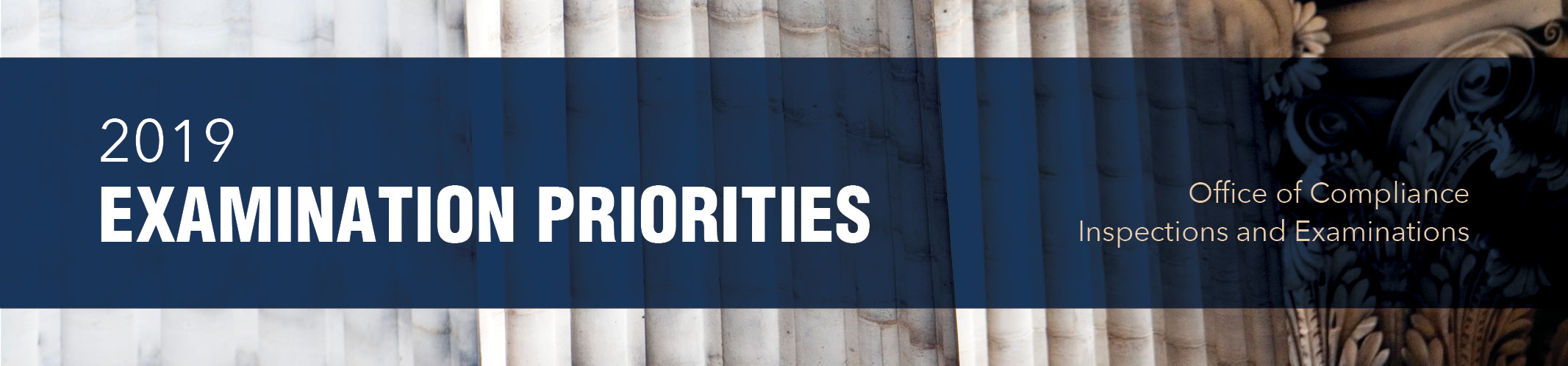 2019 Examination Priorities Header image