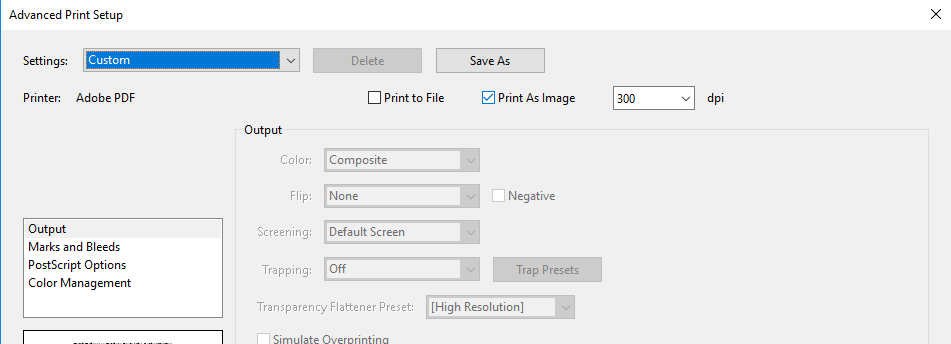 Screenshot depicting the print image checkbox selection, located in the advance print setup settings window