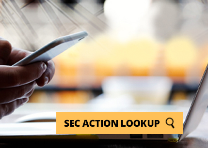 SEC action lookup button