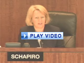 Play video of SEC Chairman Schapiro discussing options access