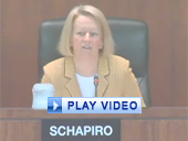 Play video of SEC Chairman Schapiro discussing incentive-based compensation at financial institutions