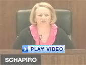 Play video of SEC Chairman Schapiro discussing new short form criteria