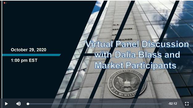 Virtual Panel Discussion with Dalia Blass and Market Participants screen clip